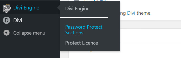 Divi Password Protect Section User Guide - Divi Engine