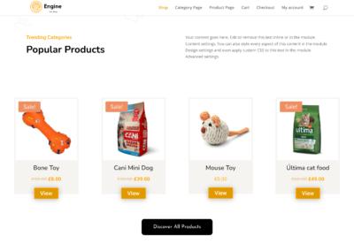 BodyCommerce Custom Product Loop