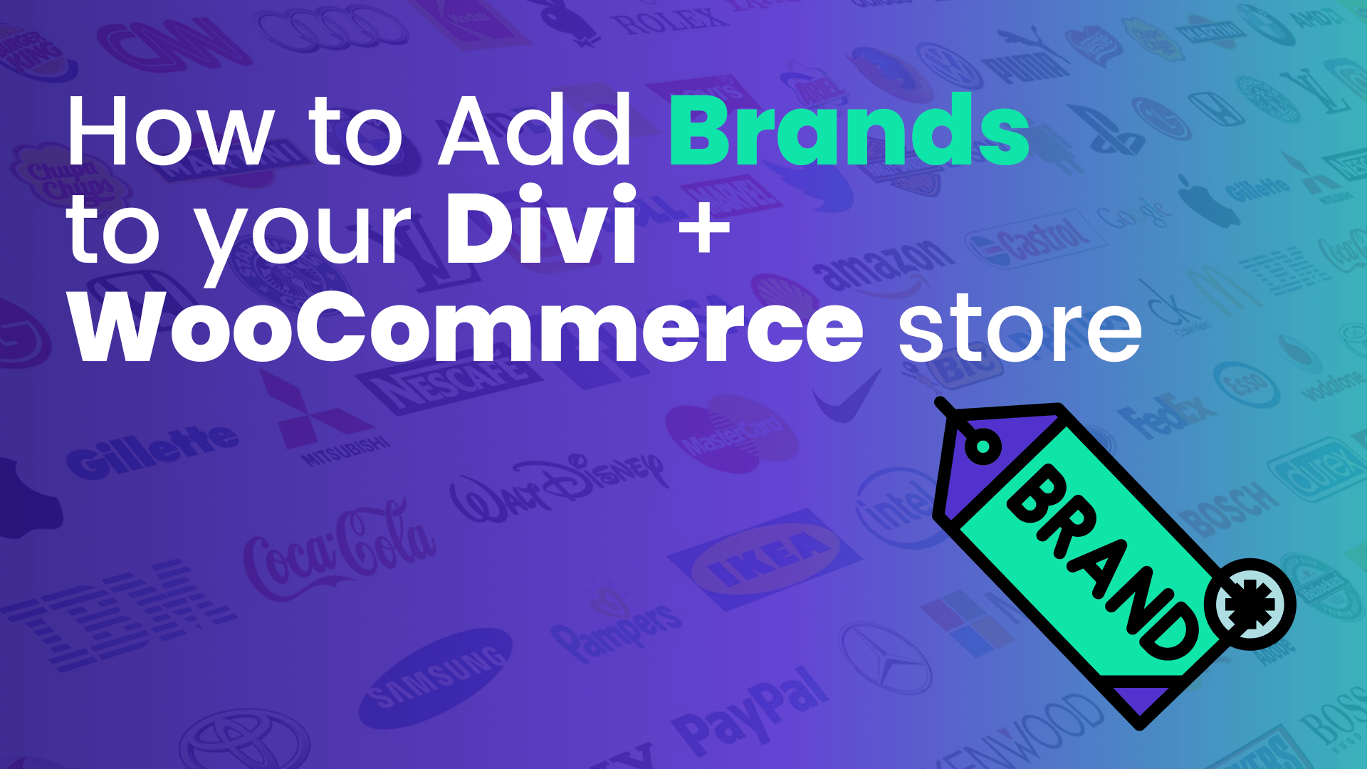 How to Add Brands to your Divi WooCommerce Store