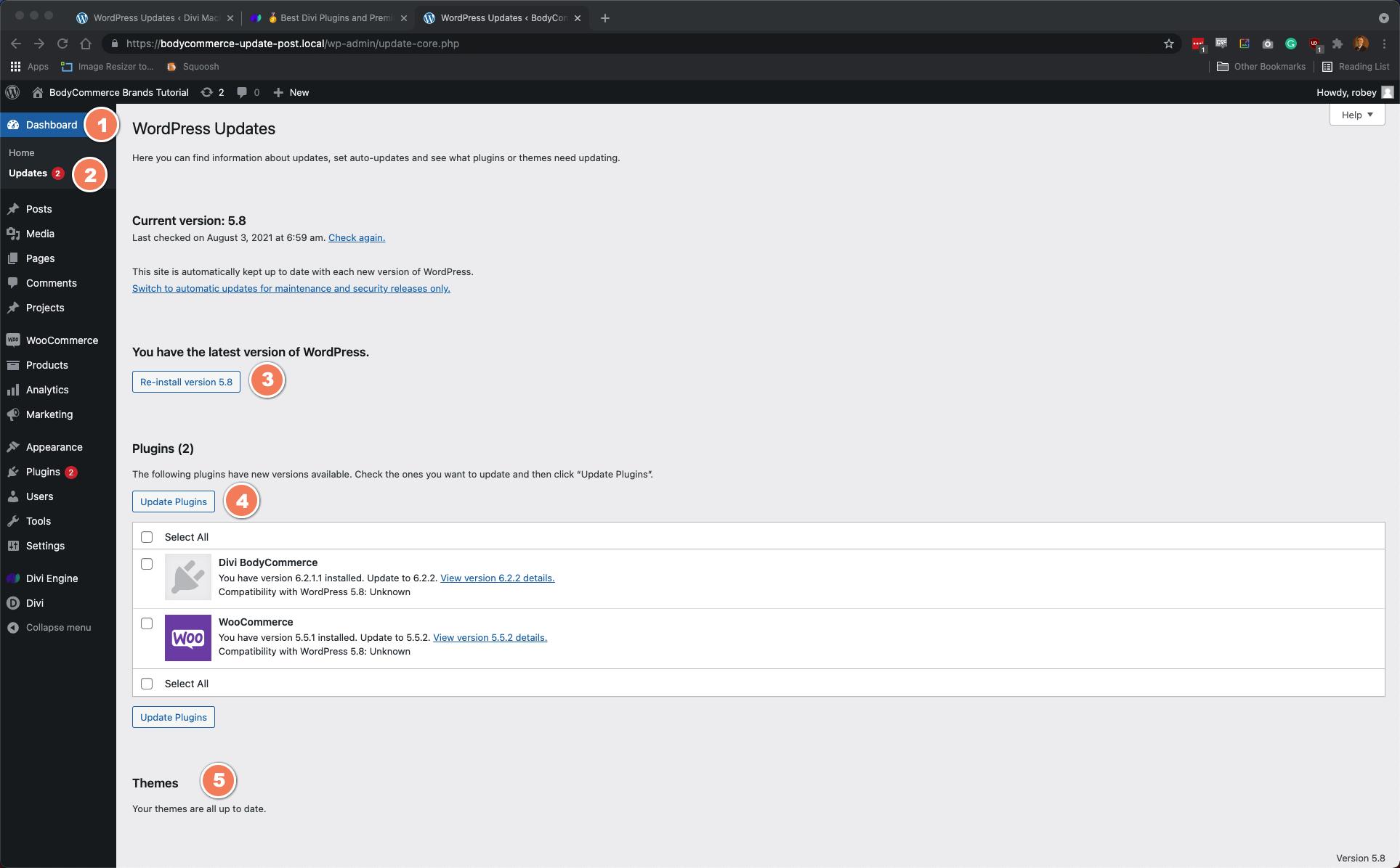 Update WordPress, Divi, and Plugins